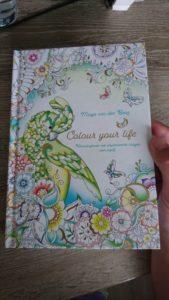 Recensie exemplaar Colour your life- Masja van den Berg